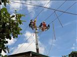 ĐIỆN LỰC GIA LỘC: Tăng cường giảm thiểu các điểm vi phạm hành lang lưới điện cao áp.